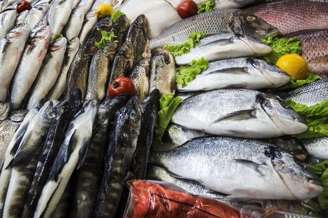 Молдова продолжает скупать украинскую живую рыбу