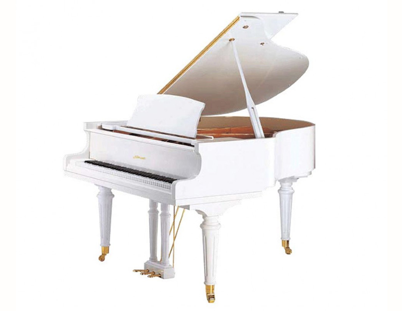 Современные клавишные инструменты: чем отличается пианино от рояля
