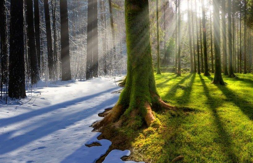 Всемирный банк предлагает вдвое увеличить финансирование защиты климата